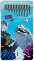 SET Ap Dolfijnen Blikje Kleurpotl. / 6x7,95