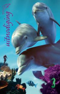 SET Ap Dolfijnen Uitnod. Kl. Pk 693 / 6x3,95