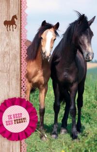 SET Paarden Uitnodiging Kl. Pk 692 / 6x3,95