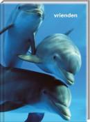 SET Dolfijnen Vriendenboek / 6x7,95