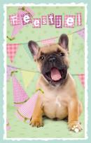 SET Studio Pets Uitnodiging Pk 793 / 6x3,95