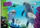 SET AP Dolfijnen schetsboek / 5x4,95