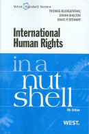 International Human Rights in a Nutshell