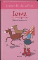 Dieren dokter Iowa het tweelingveulen