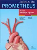 Prometheus Anatomische atlas 2 Hals en inwendige organen