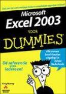 Microsoft Excel 2003 voor Dummies