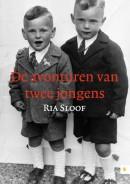 De avonturen van twee jongens