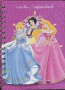 Disney Prinses creche/oppasboek