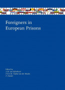 Foreigners in European Prisons