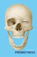 Anatomische Atlas Prometheus 3 delen