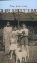 Koude Sambal. Indische jeugdverhalen