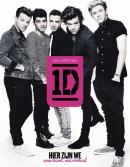 One Direction - Hier zijn we, onze band, ons verhaal