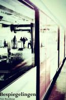 Bespiegelingen